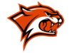 Wildcats Cut Orange Image
