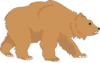Fluffy Brown Bear Clip Art