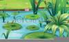 Fish Pond Clipart Image