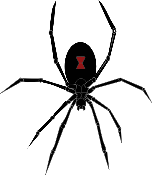 Black Widow Spi... Insect Drawings Clip Art