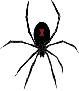 Black Widow Spider Clip Art