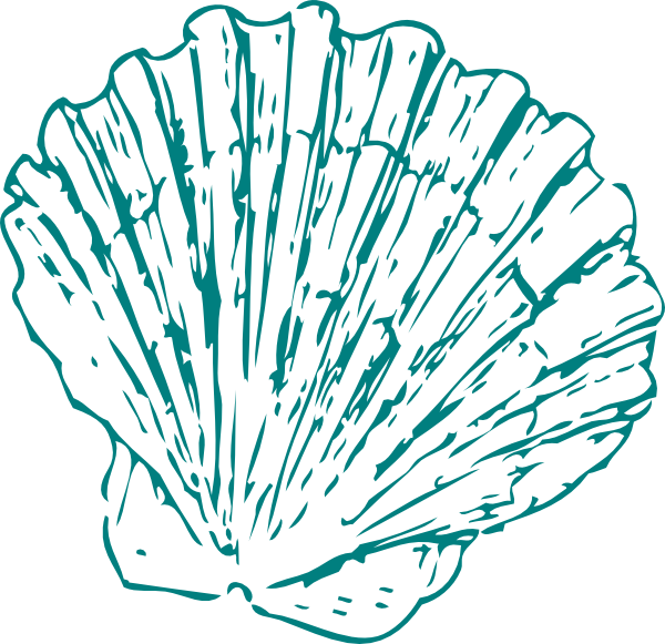 Greeen Sea Shell Clip Art at Clker.com - vector clip art ...