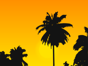 Tropic Sunset Clip Art