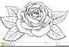 Clipart Of Flowers Black And White Image
