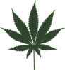 Dark Green Marijuana Leaf, Vector Format Clip Art