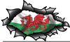 Free Clipart Welsh Dragon Image