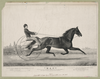 Mac : June 28th 1853 In A Match With  Tacony  Over The Union Course L.i. Mile Heats In Harness, Won The Two First Heats In 2:28-2:29 Image