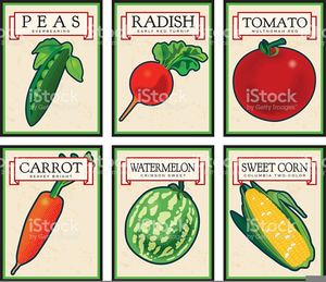 antique seed packet clipart free images at clker com vector clip rh clker com seed packet clipart vintage vegetable seed packet clipart