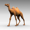 Animated Camel Walking Image