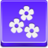 Free Violet Button Flowers Image