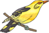 Perched Yellow Finch Clip Art