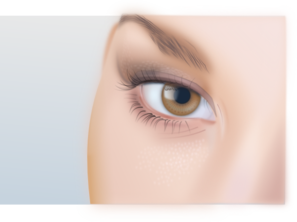 Female Eye  Clip Art