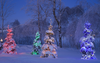 Snowy Christmas Night Image