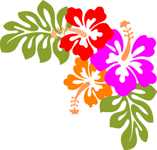 hibiscus clip art at clker com