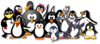Penguin Group Photo Clip Art