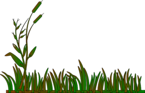 Cattails Outline Green/brown Clip Art