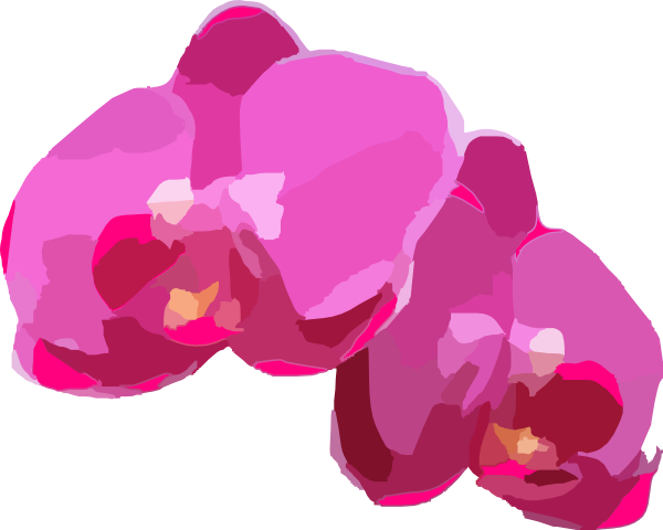 pink orchids clip art at clker com vector clip art online royalty rh clker com orchid clipart images orchid clipart png
