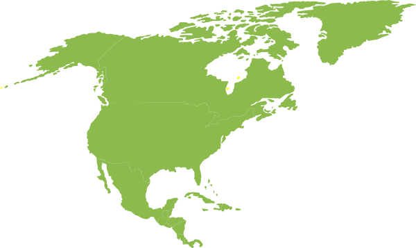 continent of north america green clip art at clker com vector rh clker com north america map clip art free clipart of north america