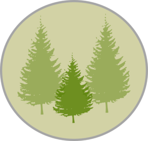 Three Pine Trees Clip Art
