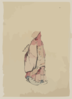 [side View Of A Monk, Full-length Portrait, Facing Left, Wearing Gown With Hood] Clip Art