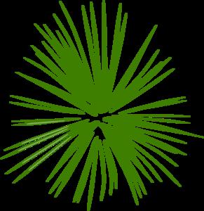 Firework green. Blk wht clip art