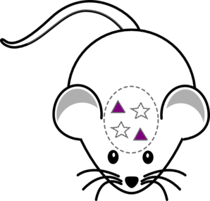 Mouse Pyramidal Purple Clip Art