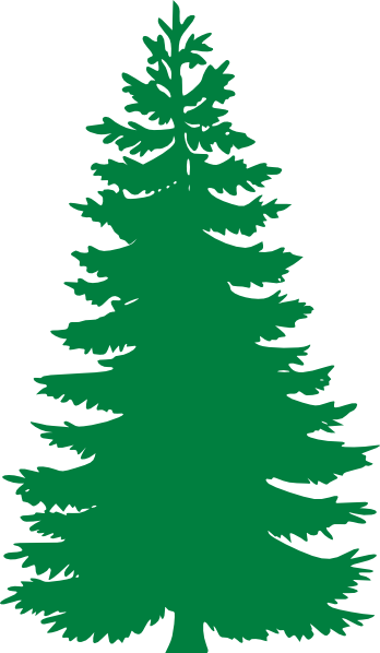 pine tree clip art at clker com vector clip art online royalty rh clker com pine tree clip art royalty free pine tree clip art free