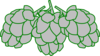 Hops Green Outline Clip Art