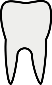 Sallee Tooth Clip Art
