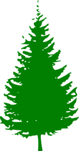 Pine Tree Green Clip Art