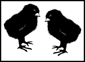 Two Black Chicks With White Background Clip Art