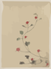 [small Red Blossoms On A Vine] Clip Art