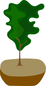Tree In Pot Clip Art
