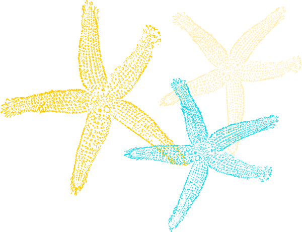 Starfish printable