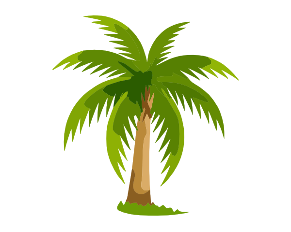 palm tree clip art - photo #11