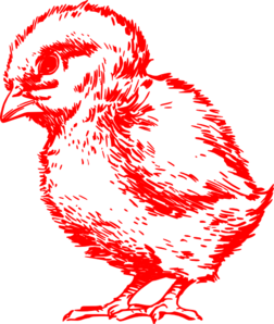 Chick Red  Clip Art
