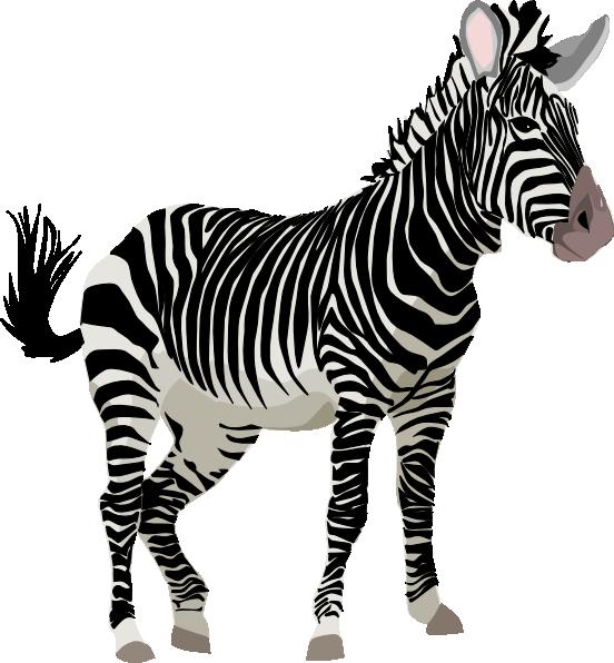 clipart zebra images - photo #2
