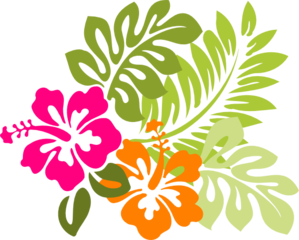 Hibiscus Orange Clip Art