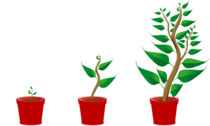 Image result for growing clipart