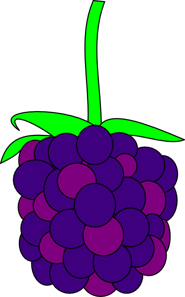 Blackberry Clip Art Vector Online Royalty Free Public