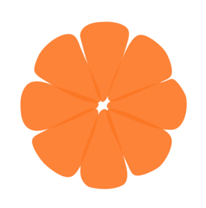Tangerine Sections With No Outer Clip Art