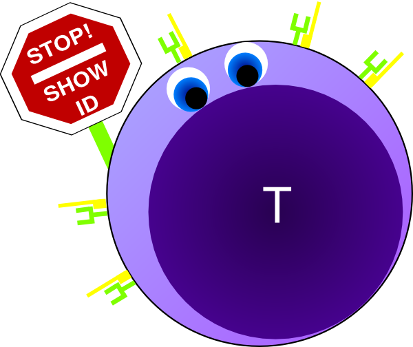 clipart naive t cell green