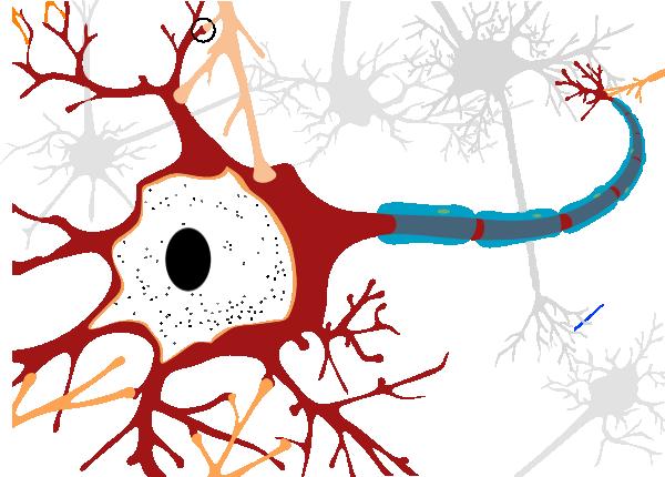 Simple Unlabelled Neuron clip artNeuron Unlabeled