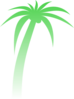Palm Tree Gradient Clip Art