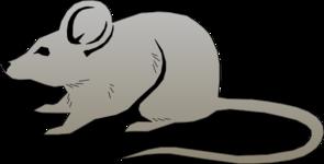 mouse clip art at clker com vector clip art online royalty free rh clker com clipart house clip art mouse trap