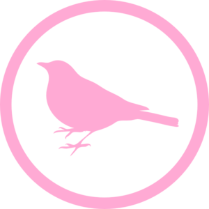 Pink Early Bird Clip Art