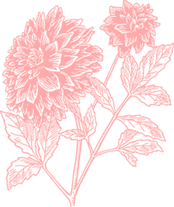 Light Pink Flower Print Clip Art