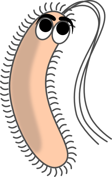 Modified Funny Bacteria Clip Art at Clker.com - vector clip art online ...