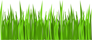 Grass Cook Out Clip Art
