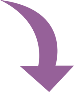 Curved-arrow-purple Clip Art